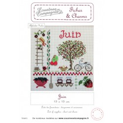JUIN - SEMI-KIT FICHES & CHARMS